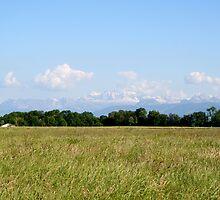 Swiss Alps by Benio