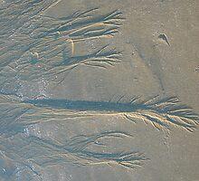 Markings in the Sand by suebankert