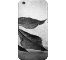 Time Worn iPhone Case/Skin