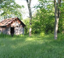 old shack by rasp35