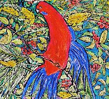 rosella by Susie a'Beckett
