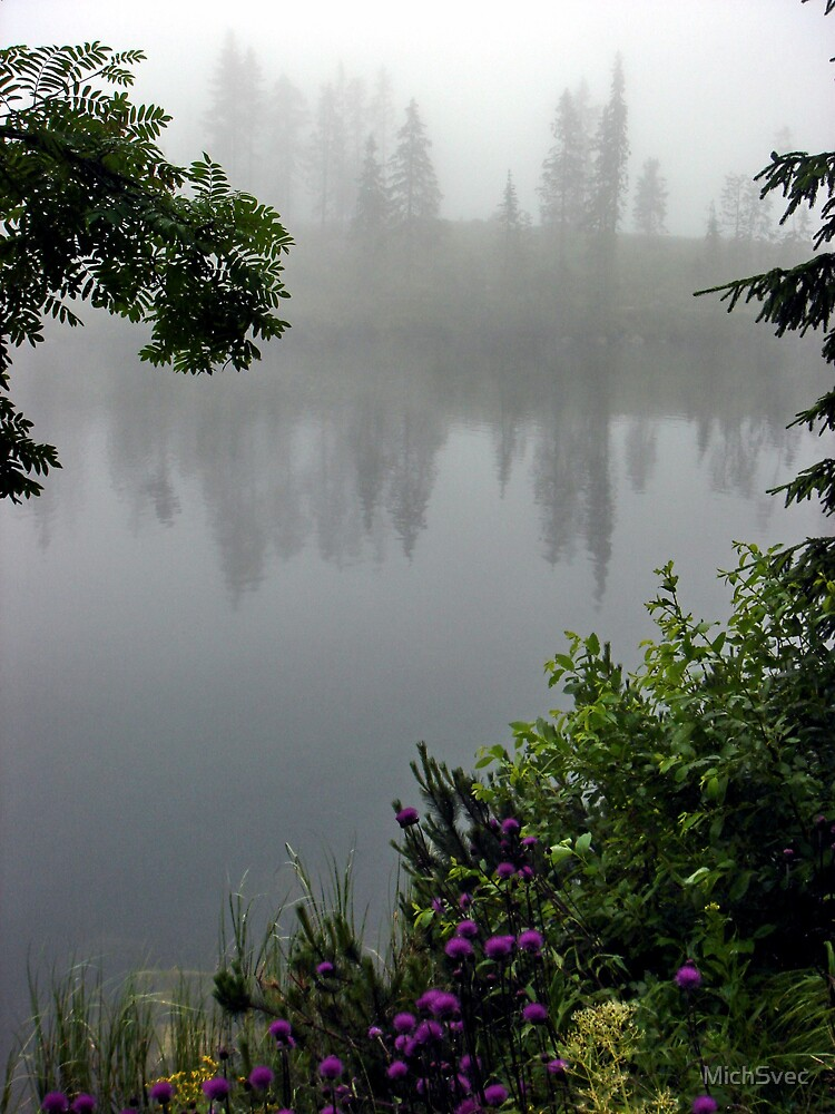 Foggy Lakeside by MichSvec