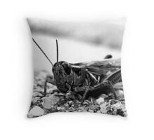 Hopper. Throw Pillow