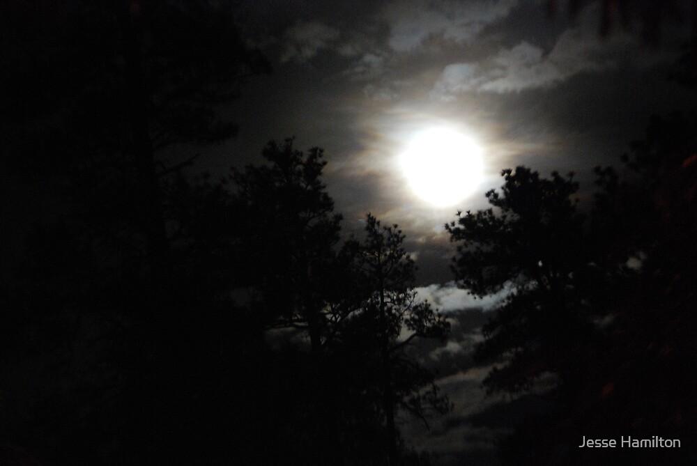 Moon by Jesse Hamilton