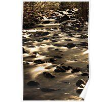 Porters Creek Poster