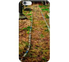 The Pathway iPhone Case/Skin