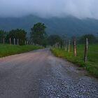 quiet road by Paul Doucette