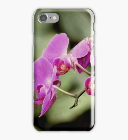 Orchid Blossoms iPhone Case/Skin