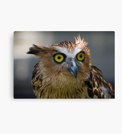 Buffy Fish-owl Canvas Print