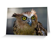 Buffy Fish-owl Greeting Card