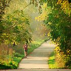 early fall by ed wong