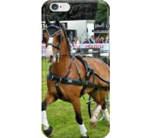 Lowther Horse Driving Trials iPhone Case/Skin