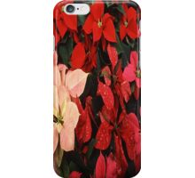 Poinsettia Christmas Holiday Flowers iPhone Case/Skin