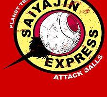 Saiyajin Express by NinoMelon
