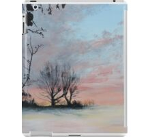 Wintery Sunrise iPad Case/Skin