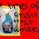 Windex by Parmas