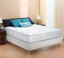 Online Shop of Mattresses | Springwel.in by S P  Singh