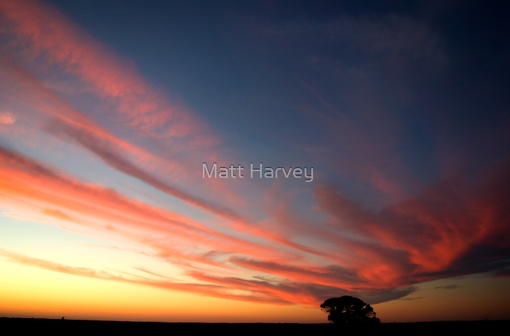 Winter Colours by Matt Harvey