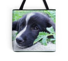 I M LONELY Tote Bag