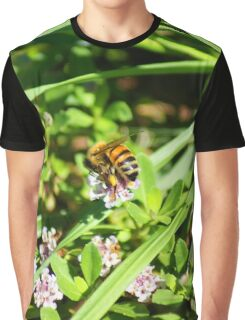 Busy Bee Graphic T-Shirt
