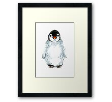Molly the baby penguin  Framed Print