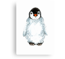Molly the baby penguin  Canvas Print