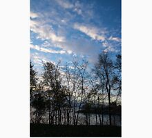 Sky Glory Through The Screen Of Trees Unisex T-Shirt