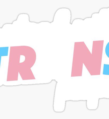 trans.people Sticker