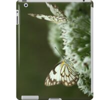 """Two Posing... """"Brown-veined White butterfly"""" (Belenois aurota) Free State, South Africa iPad Case/Skin"""