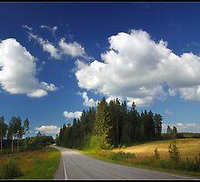 My way 02 by Alpo Syvänen