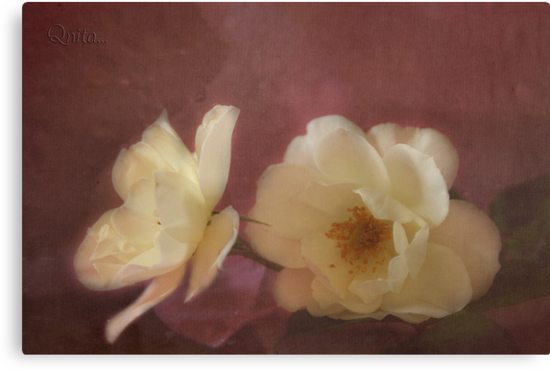Vintage Roses for Grandma... - Free State, South Africa by Qnita