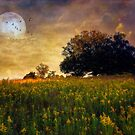 Warmth of the Harvest Moon by John Rivera