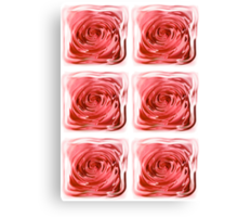ROSES BEHIND GLASS  Canvas Print