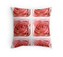 ROSES BEHIND GLASS  Throw Pillow