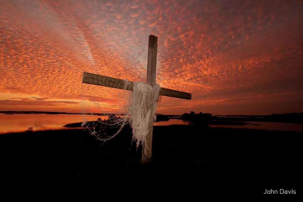 GOD'S OWN PAINT BRUSH by John Davis