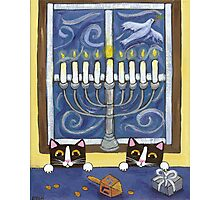 Hanukkah Cats Photographic Print