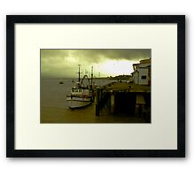 I'm not budging! Framed Print