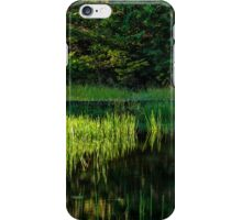 Beaver Pond  iPhone Case/Skin
