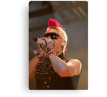 Thirty Seconds to Mars 01 Metal Print