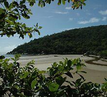 Finch Bay by TheGratefulDad
