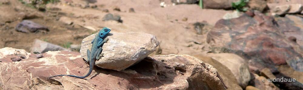 Technicolour Lizard by wondawe