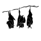 Three bats by Matt Mawson