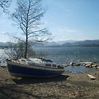 Boat by the Lake by Tanya Housham