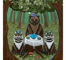 A Forest Tea Party Photographic Print