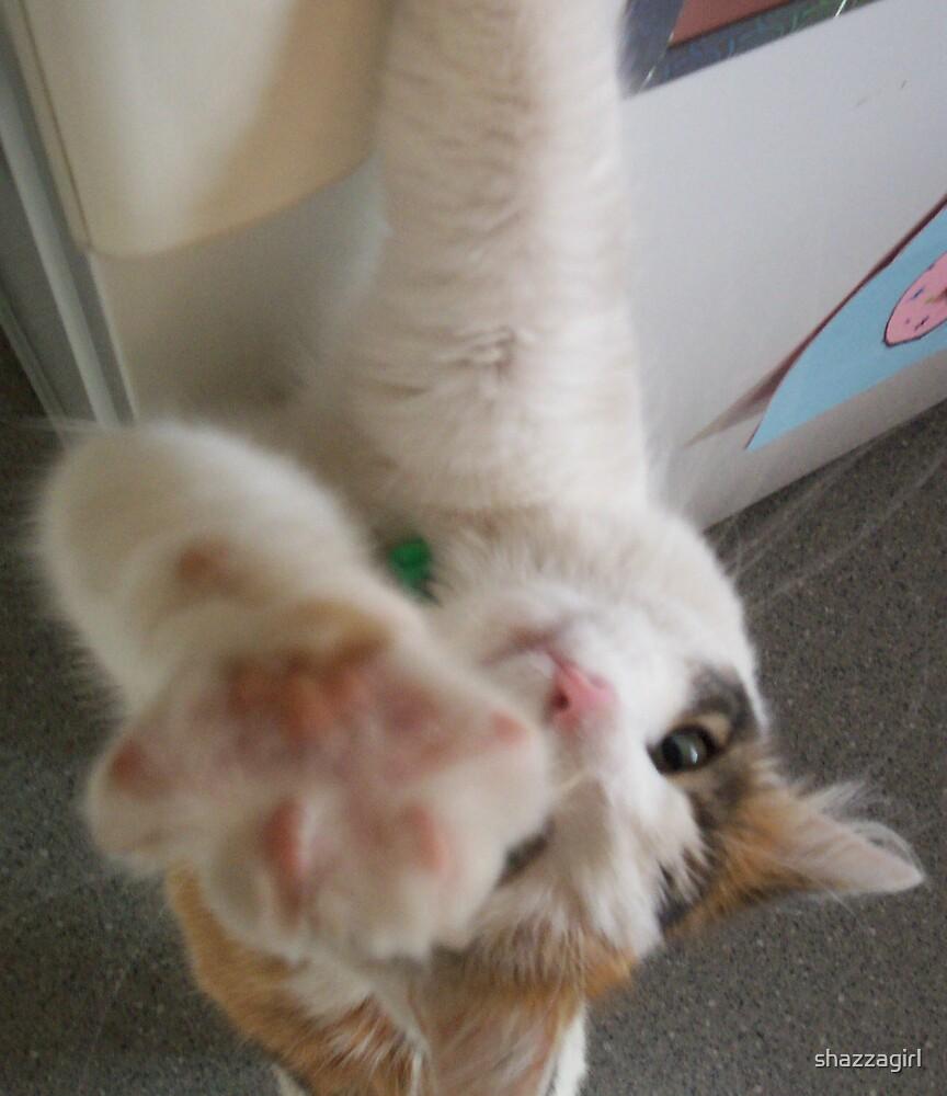 hi5 from Kitty by shazzagirl