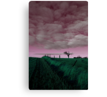 The Rihanna Tree, In The Pink! Canvas Print