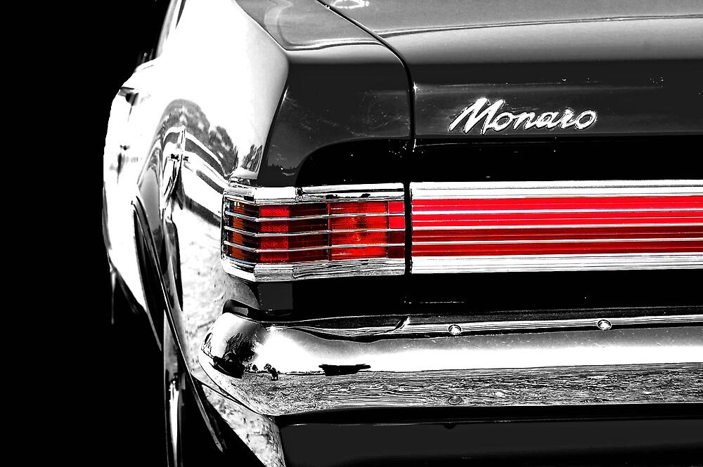 Mono Monaro by Sarah Moore