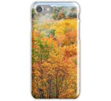 Autumn Overlook iPhone Case/Skin
