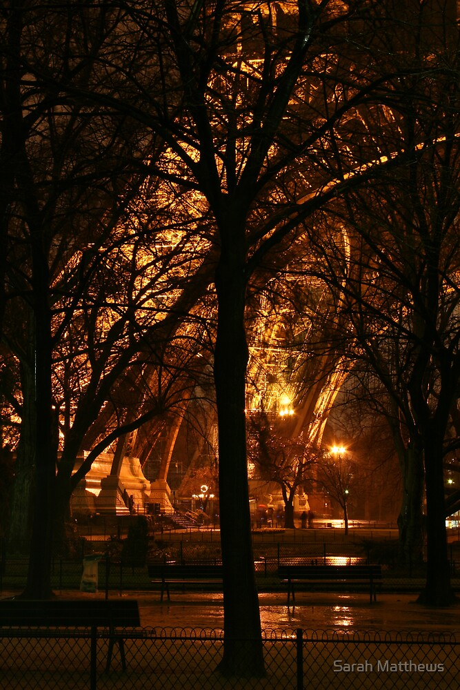 A Tree and the Eiffel Tower by Sarah Matthews