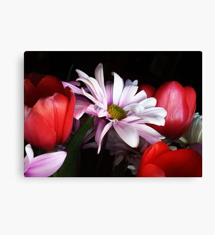 Tulips and Daisies Canvas Print